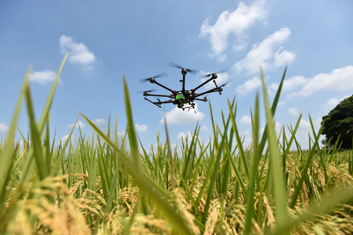 """Drones for Agriculture"" Knowledge Sharing Day"